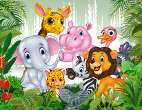 Kreskówki dzikie zwierzę w dżungli ilustracja wektor