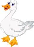 Kreskówki kaczka dla ciebie projektuje Fotografia Royalty Free