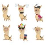 Kreskówki lamy set Set śliczni lama majchery, odznaki odizolowywający lub Zdjęcia Stock