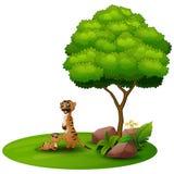 Kreskówki macierzysty meerkat z jej małym dzieckiem pod drzewem na białym tle ilustracja wektor