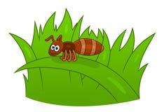 Kreskówki mrówka na trawie ilustracji