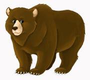 Kreskówki niedźwiadkowy trwanie przyglądający i ono uśmiecha się na białym tle ilustracji