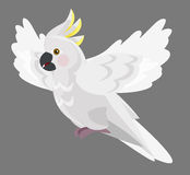 Kreskówki papuga odosobniona - kakadu - Obraz Stock