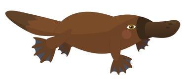 Kreskówki papuga odosobniona - platypus - Zdjęcie Stock