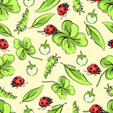 Kreskówki ręki ścigi rysunkowa biedronka, gąsienicy, liście i kwiaty koniczynowy bezszwowy wzór, wektorowy tło ilustracja wektor