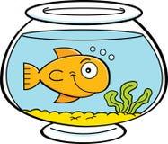 Kreskówki ryba w rybim pucharze Fotografia Stock