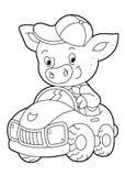 Kreskówki scena z szczęśliwym śmiesznym i młodym świniowatym napędowym samochodem kolorystyki strona - na białym tle - Zdjęcia Stock