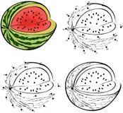 Kreskówki watermellon również zwrócić corel ilustracji wektora Barwić robić i kropka Obrazy Stock