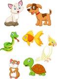 Kreskówki zwierzę domowe Obrazy Royalty Free