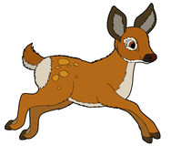 Kreskówki zwierzę ilustracja dla dzieci - roe - royalty ilustracja
