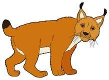Kreskówki zwierzę ilustracja dla dzieci - ryś - Zdjęcia Royalty Free