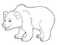 Kreskówki zwierzę kolorystyki strona - niedźwiedź - royalty ilustracja