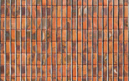 Kreskowa Ceglana tekstura Zdjęcia Stock
