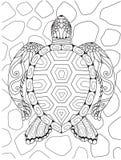Kreskowa sztuka piękny żółw dla projekta elementu również zwrócić corel ilustracji wektora ilustracji