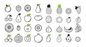 Kreskowe owocowe ikony odizolowywać na białej tło wektoru ilustraci Zdjęcia Royalty Free