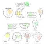 Kreskowi ikony wiosny owoc i warzywo z Colour punktem, wektor Obrazy Royalty Free