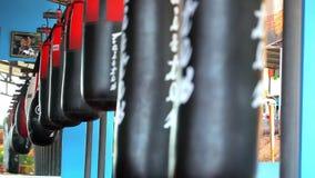 Kreskowy obwieszenie uderza pięścią torbę w bokserskim gym wideo zdjęcie wideo