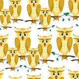 Kreskówka rodzina sowy Obraz Royalty Free