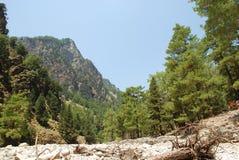 Kreta, Samaria Gorge, sehr schöne Ansicht der Berge und der kleinen Bäume, der Steine, des Sandes und der heißen Sonne stockfotografie