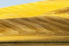 Kreta senesi, charakteristische Landschaft in Val d'Orcia Stockfotos