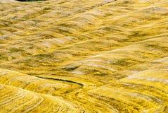Kreta senesi, charakteristische Landschaft in Val d'Orcia Lizenzfreie Stockbilder