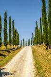 Kretasenesi, karakteristiskt landskap i den Val d'Orciaen Fotografering för Bildbyråer