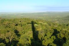 Kreuz auf dem Dschungel stockfotografie