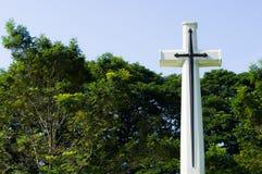 Kreuz mit grünen Bäumen im Hintergrund Stockbilder