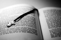 Kreuz und ein Buch Lizenzfreies Stockfoto