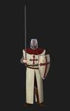 Kreuzfahrer-Ritter Standing Guard Illustration Stockbilder
