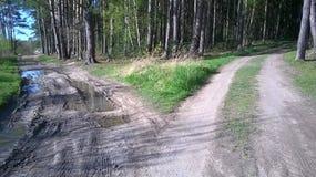 Kreuzung und zwei verschiedene Wege stockbild