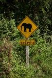 Kreuzungszeichen des Elefanten herein thailändisch lizenzfreie stockfotografie