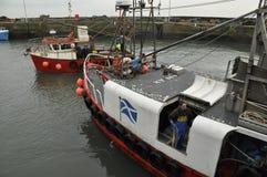 Krewetkowy rybak Pittenweem Szkocja UK obrazy royalty free
