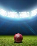 Kricket-Stadion und Ball stockfotos
