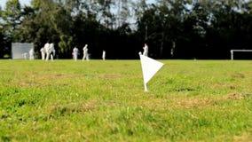 Kricketgrenzflagge stock video footage