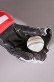 Kricketkugel im Handschuh lizenzfreie stockfotografie