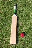 Kricketschläger und Ball auf grünem Gras Lizenzfreies Stockfoto