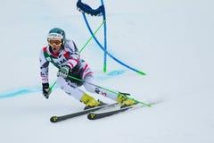 KRIECHMAYR Vincent  (AUT). Alta Badia, ITALY 22 December 2013. KRIECHMAYR Vincent (AUT) competing in the Audi FIS Alpine Skiing World Cup MEN'S GIANT SLALOM Stock Images