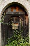 Kriechpflanzen auf einer Tür Stockbilder