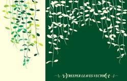 Kriechpflanzenblätter stock abbildung
