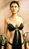 Kriegers-Prinzessin III Stockfoto