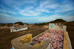 Kriegsgräber mit buddhistischen Markierungen Mui Ne, Vietnam Lizenzfreie Stockfotos