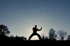 Kriegskünstler-Schattenbild - doppelter Messer-Block Lizenzfreie Stockfotografie