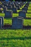 Krig-gravar i en kyrkogård Arkivbilder