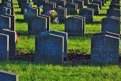 Krig-gravar i en kyrkogård Arkivbild