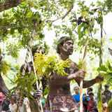 Krigaredansare Solomon Islands Royaltyfri Foto