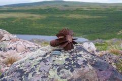 Krigeko i norr berg Fotografering för Bildbyråer