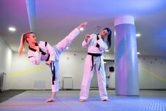 Krigs- konstnärer som visar dedikation och disciplin i Taekwondo royaltyfri foto