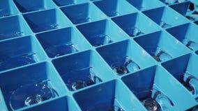 Krijg de doos met schone glazen van een professionele afwasmachine stock footage