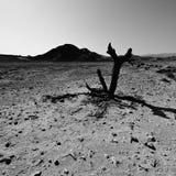 Krise und Leere in Schwarzweiss Stockfoto